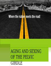 Sexing and Aging of Pelvis