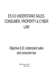 LAW 6.01 Presentation 2 Sales Laws