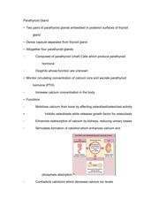 Study Guide for Parathyroid Gland and Adrenal Cortex