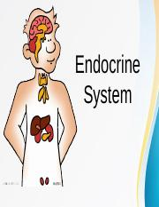 Endocrine-System-Report.ppt