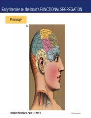 05 Functional Neuroanatomy Overview