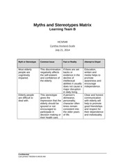 Myths and Stereotypes Matrix (1)