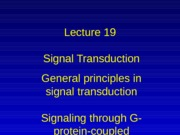 Lecture 19-20, cell signaling I & II for class
