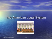The American Legal System2