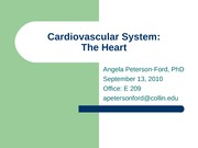 Cardiovascular System The Heart part 1