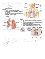 RESPIRATORY NOTES - LECTURE 15-20
