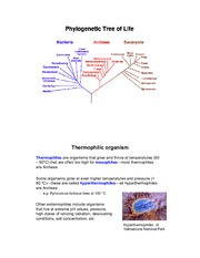 Notes - Thermostable Proteins