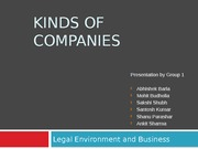 Kinds of companies Group 1