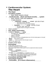 3 - CV Heart Class Notes