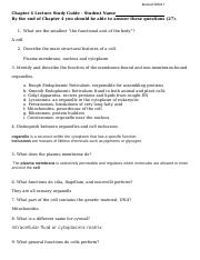 Chapter 4 Lecture Notes Worksheet final.docx