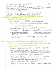 ARH Ch. 14-23 notes